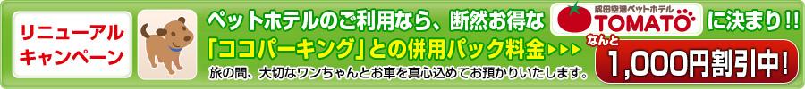 成田ペットホテル トマト